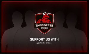 Zuwachs im Team TheBeasts Gaming